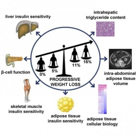Health Benefits of a Little Weight Loss