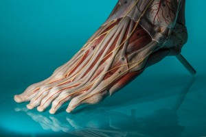 Diabetic Foot Care in Australia