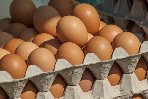 Good Earth Egg Recall