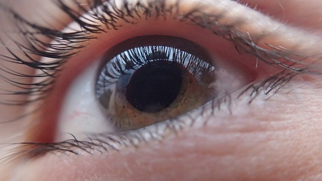 Photo of Eye: Vision Loss Prevention with Eye Pressure Test