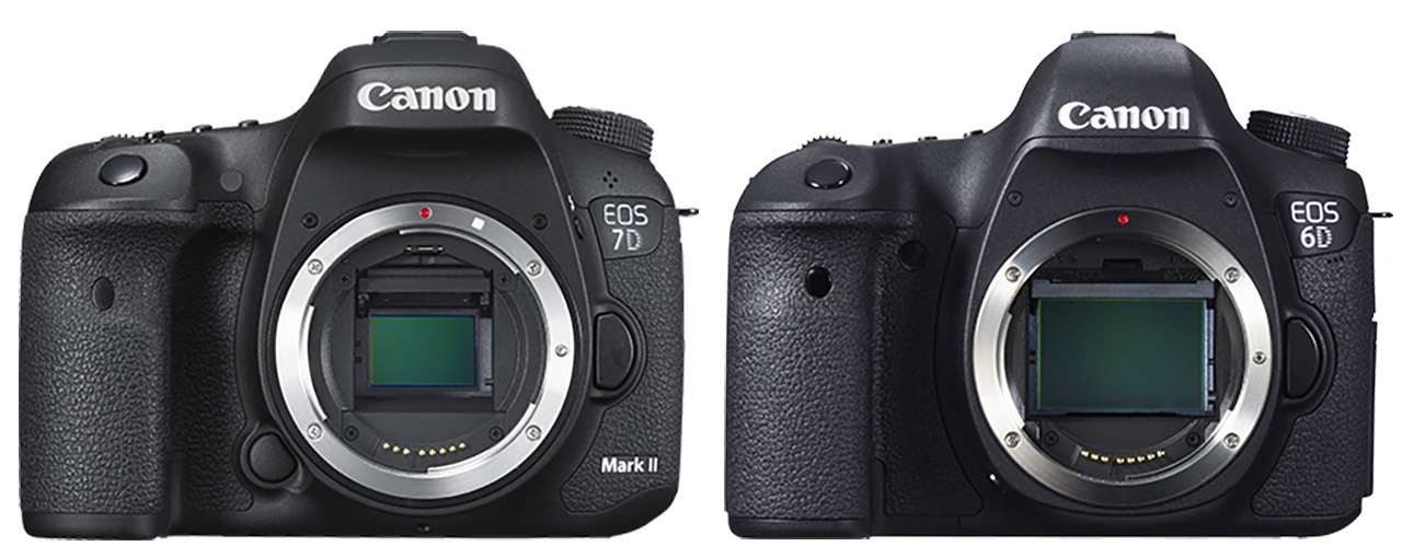 Canon EOS 7D Mark ii vs 6D