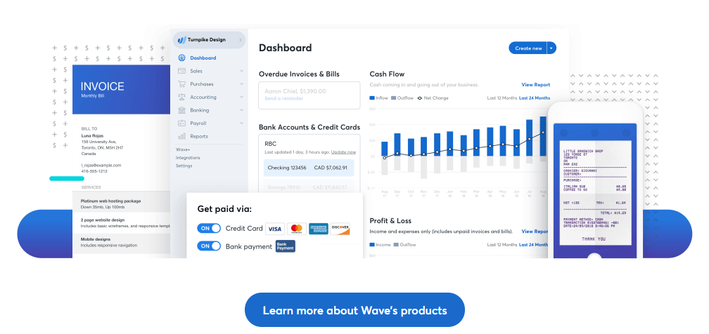 screenshot of wave's accounting products