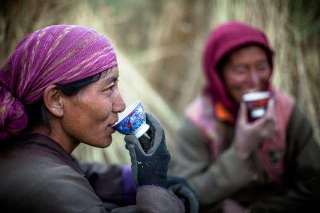 Ladakhi women taking a chai brake during the barley harvest in Lamayuru.
