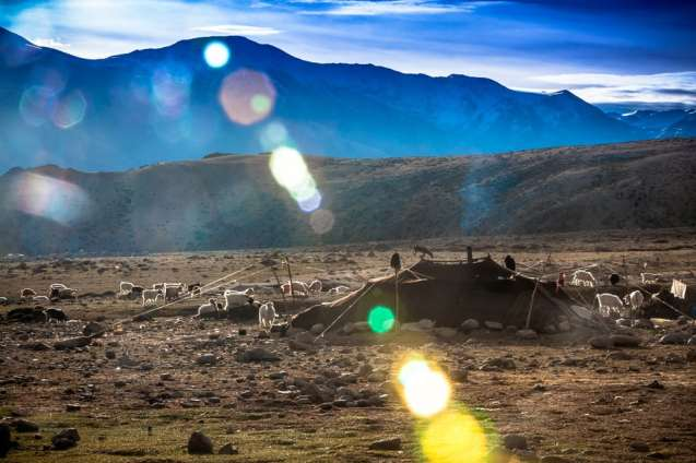 The nomadic Changpa herdsman live in tents made of animal hides.