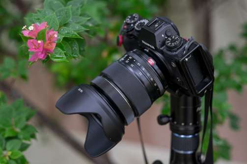 Fujinon XF 16-55 mm f/2.8 R LM WR with the tulip lens hood