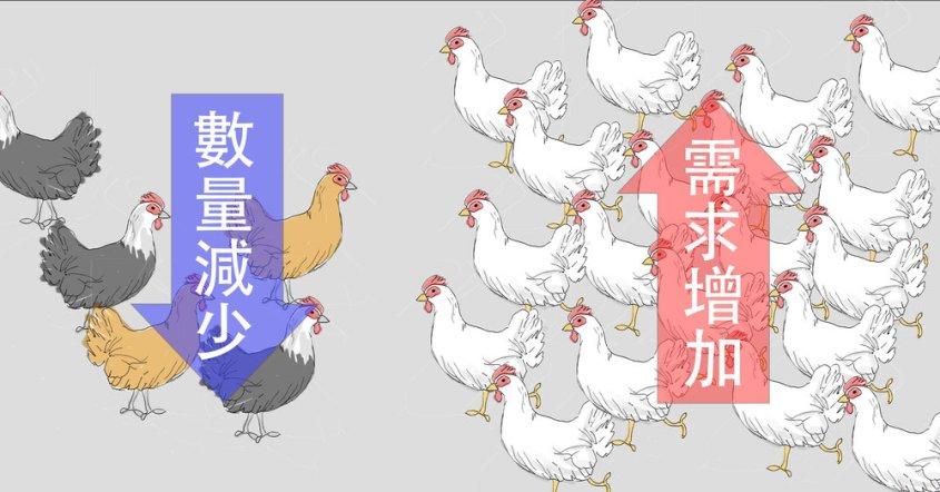 birdflu