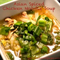 Asian Spiced Chicken Noodle Soup