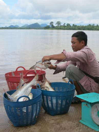 Killing the Mekong, Dam by Dam