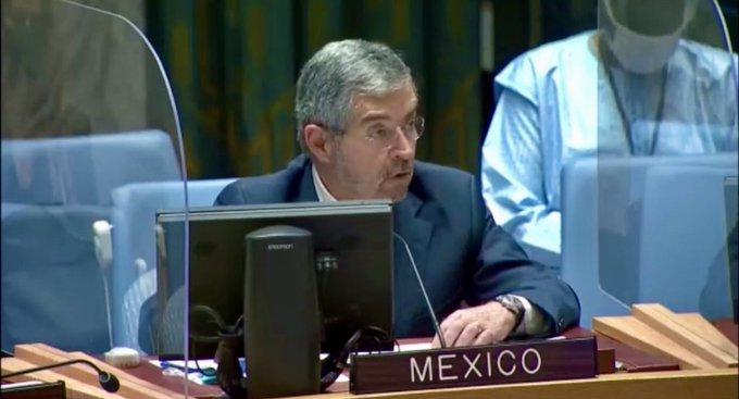 De la Fuente in the UN Security Council