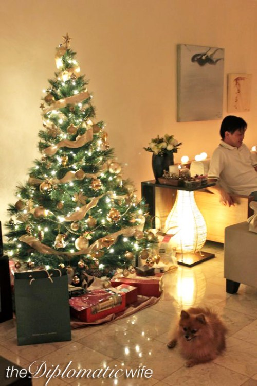 Our first official party hosting: Christmas Eve 2010