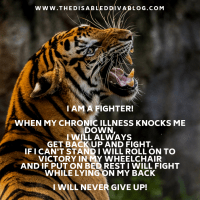 I am a fighter!
