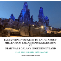 Everything You Need to Know about Millennium Falcon: Smugglers Run at Star Wars Galaxy Edge Disneyland