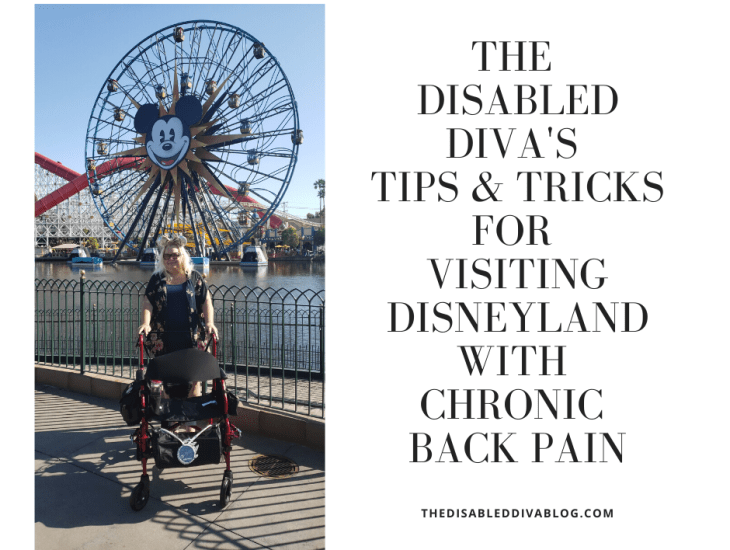 tips for visiting Disneyland