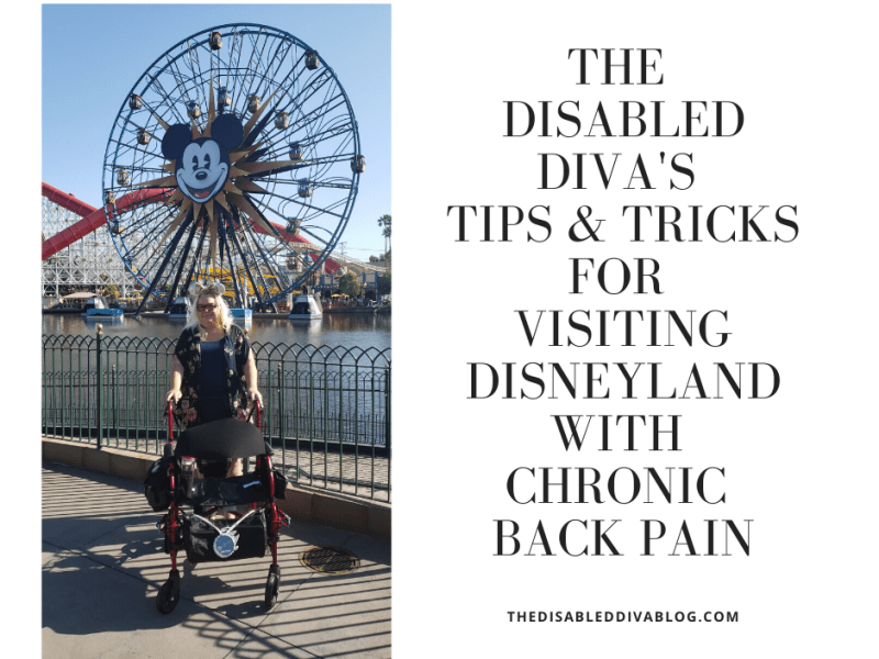 tips for visiting Disneyland