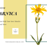 How Arnica Can Help Your Sore Muscles And More