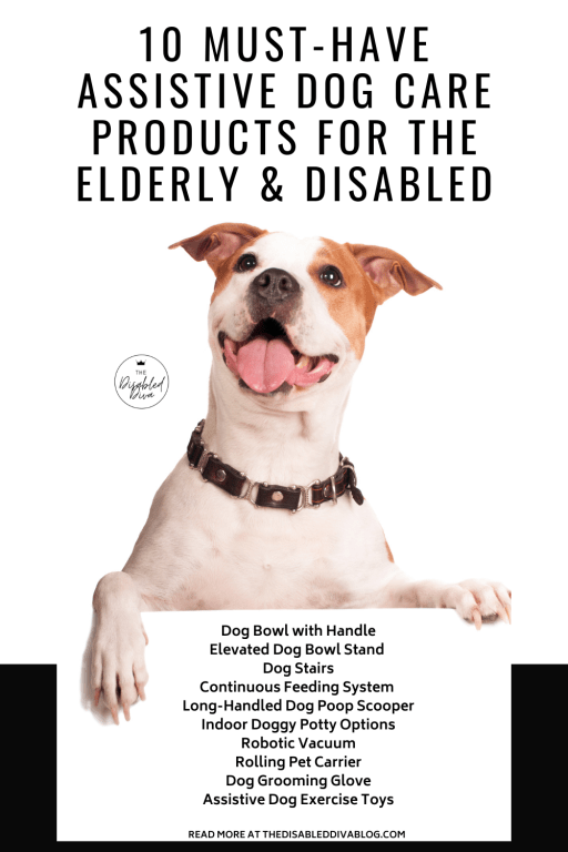10 Assistive dog products to make it easier and less painful for the elderly and disabled to care for them.