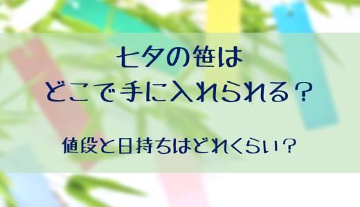 七夕の笹はどこで手に入れられる?値段と日持ちはどれくらい?