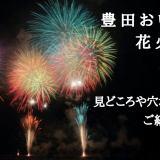 豊田おいでん花火大会2018