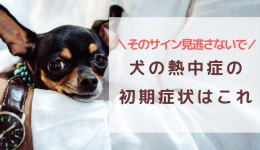 犬の熱中症の 初期症状はこれ