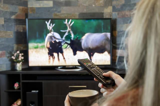 カップルで大晦日のテレビ番組を見る