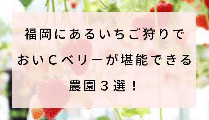 福岡にあるいちご狩りでおいCベリーが堪能できる農園3選!