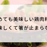 冷めても美味しい鶏肉料理!美味しくて箸が止まらない! (1)