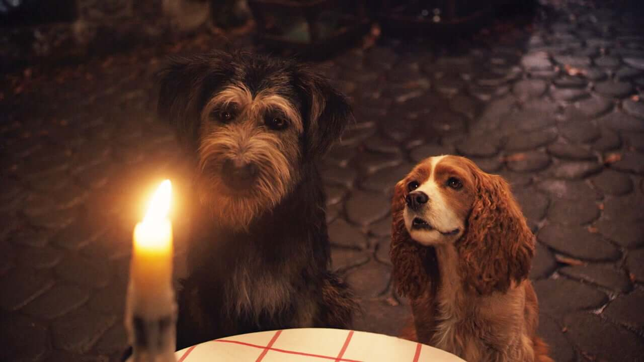 Review Lady And The Tramp 2019 The Disinsider