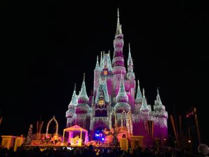 Cinderella Castle New Year's Eve 2014