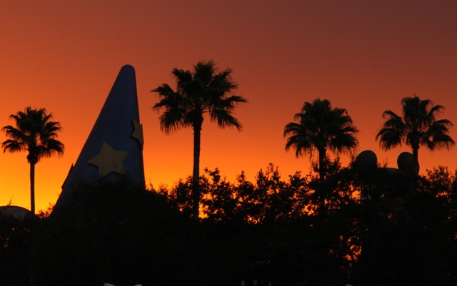 IconSunset - DHS hat - Wordless Wednesday