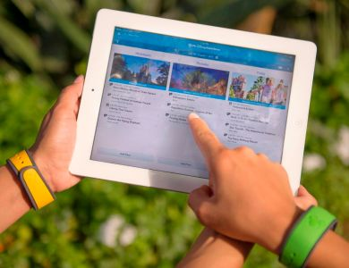 FastPass + Walt Disney World on the Fly