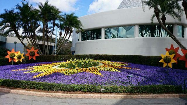 Flower & Garden Wordless Wednesday