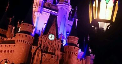 cinderella castle lights - Wordless Wednesday