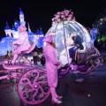 RUBY CARPO, ERIC CARPO - disney fairy tale weddings