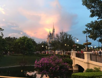 Sunset over Cinderella Castle - Wordless Wednesday