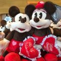 Valentine's Day Wordless Wednesday