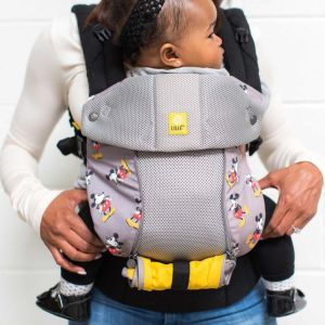 lillebaby baby carrier