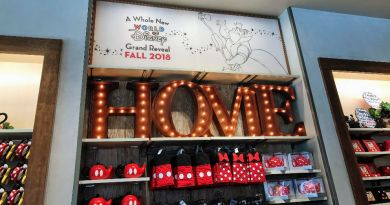 Home is Disney - Wordless Wednesday