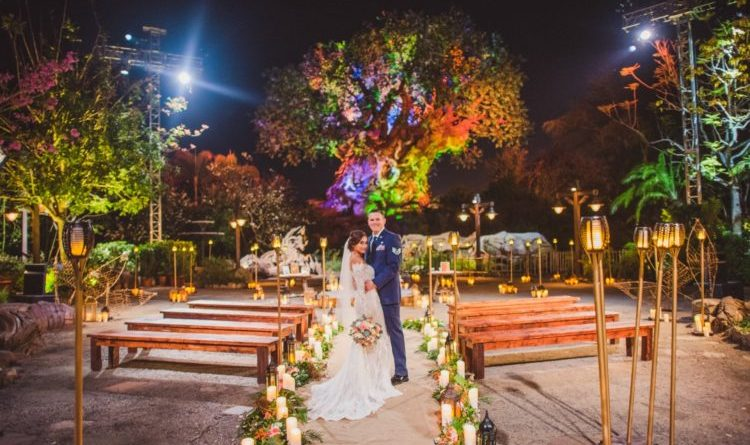 Couples Can Now Say I Do in front of Tree of Life at Disney's Animal Kingdom