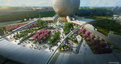 Reimagined Epcot Entrance
