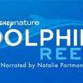 Disneynature Dolphin Reef