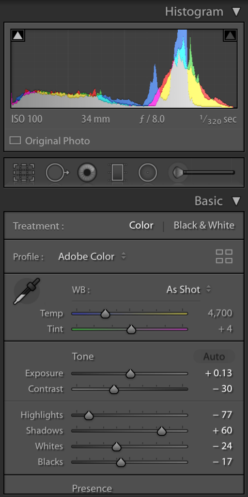 Lightroom adjustments