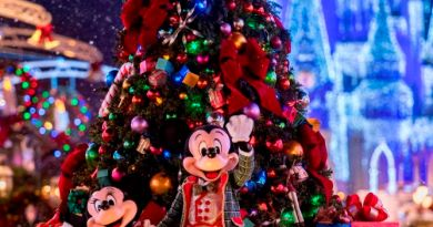 mickey very merry christmas party