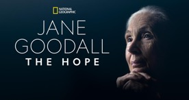Jane Goodall the hope disney+