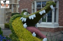 Flower and Garden Festival 2015 is only a few days away... some Topiary's are already in place.