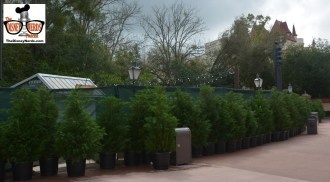Flower and Garden Festival Booths are starts to show up.