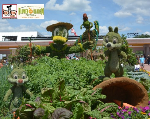 Chip and Dale made their topiary debut at the 2015 Epcot International Flower and Garden Festival