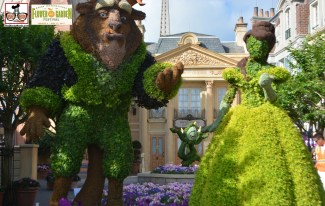 Beauty and the Beast Topiary in the France Courtyard- Epcot International Flower and Garden Festival 2015