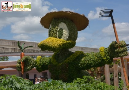 """Donald Duck Topiary - part of the """"Goofy about Spring"""" entrance topiary. - Epcot International Flower and Garden Festival 2015"""