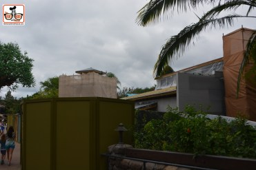 Animal Kingdom Construction Continues