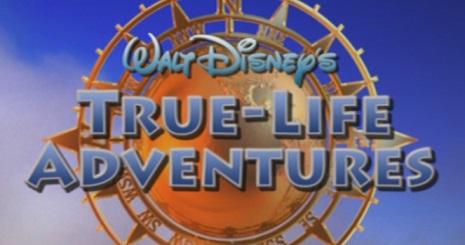 The Disney Nerds Podcast - Walt Disney - True-Life Adventures